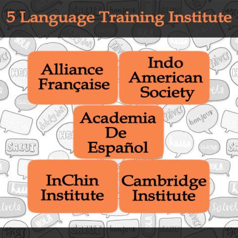 5 language training institute_ study abroad _ shine consultancy